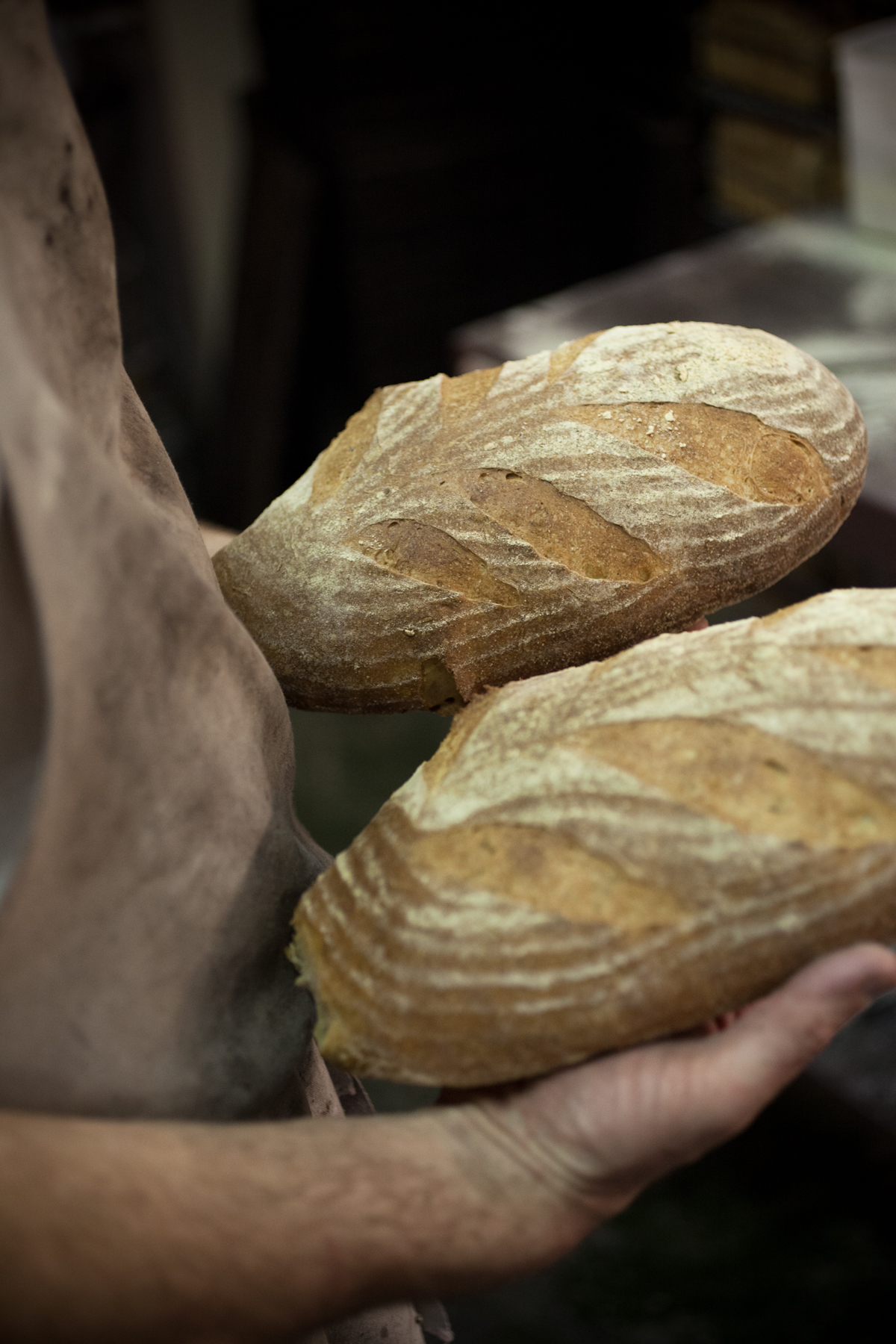 Chefs & Cooks Sourdough Baking